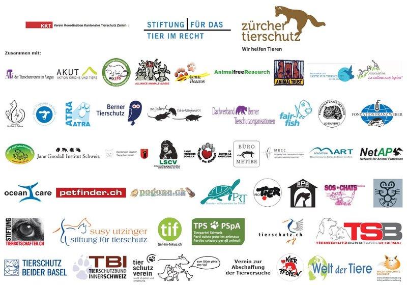 Primatenverusche unterstützende Organisationen