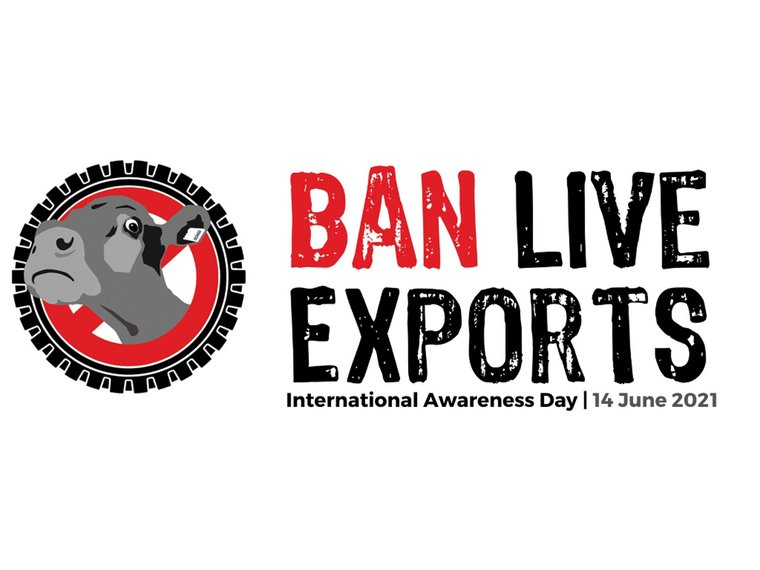 2021-Ban-live-exports.jpg