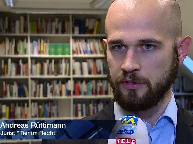 Youtube Tele M1 Aktuell vom 6.12.2017 mit Andreas Rüttimann zum Thema Tierdrama von Boningen