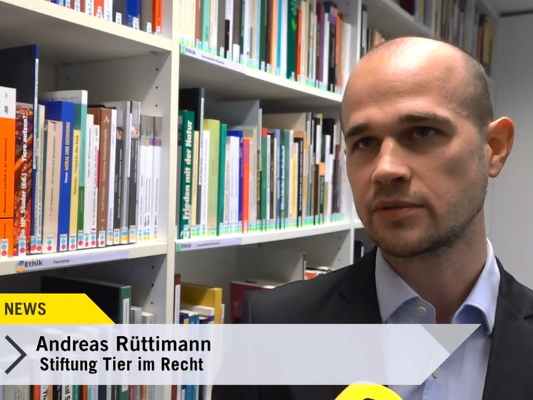 Andreas Rüttimann Tele Top News 2019