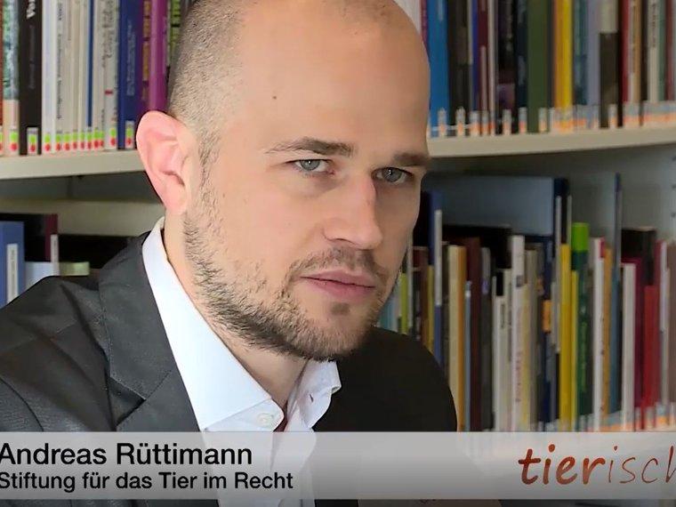 Youtube Sendung tierisch Tele M1 vom 12.2.2019 mit Andreas Rüttimann zum Thema Gesetzeslage bei Pelzproduktimporten