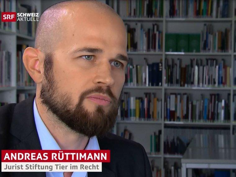 Youtube Schweiz aktuell SRF vom 16.11.2018 mit Andreas Rüttimann zum Thema Treibjagd