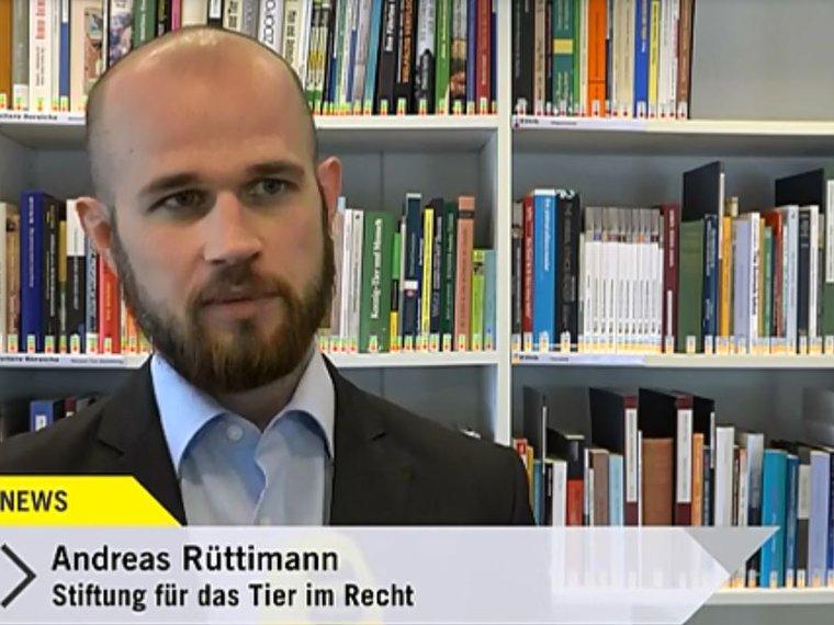 Andreas Rüttimann bei Tele Top vom 3.5.2017 Primatenversuche