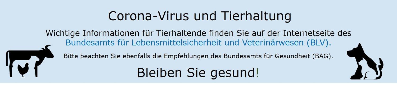 Banner-Coronavirus-BLV.jpg