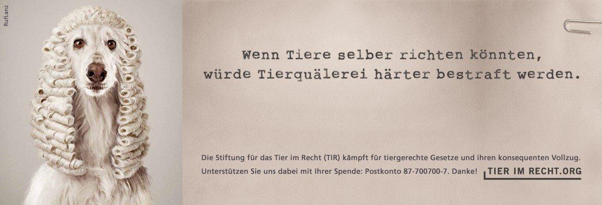 Banner-TIR.jpg