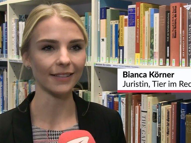 Youtube Nau.ch vom 22.11.2018 mit Bianca Körner und Stefanie Walther zum Thema Analyse der Schweizer Tierschutzstrafpraxis 2017