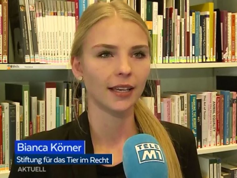 Youtube Tele M1 Aktuell vom 25.5.2018 mit Bianca Körner zum Thema getötete Jungtiere in Kornfeldern