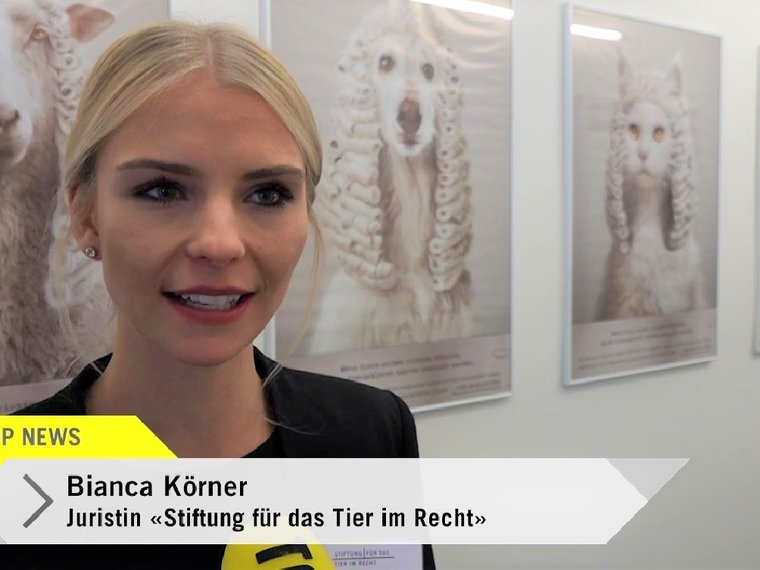 2019 11 14, Bianca Körner, Tele Top News