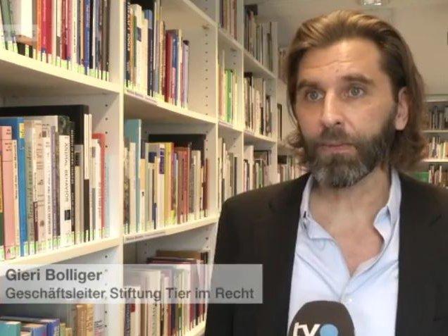 Youtube TVO und Tele Top vom 11.10.2016 mit Gieri Bolliger zum Thema Nichtanhandnahmeverfügung der Staatsanwaltschaft St. Gallen in Sachen Strafanzeige wegen Tierquälerei im Circus Royal
