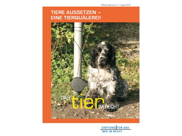 TIR Flyer Nr. 11 Front quer