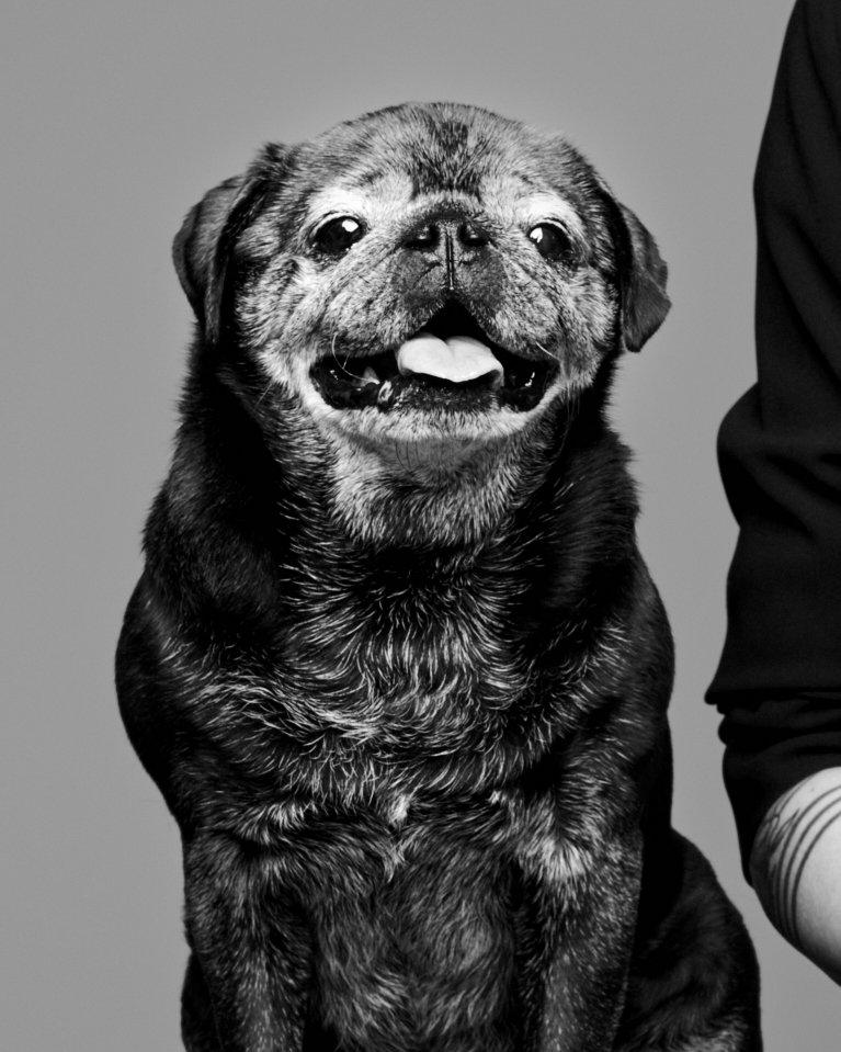 Frank Portrait