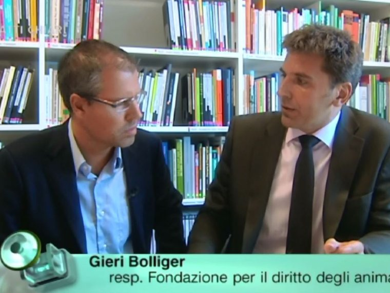 Youtube Patti Chiari RSI vom 20.11.2009 mit Gieri Bolliger zum Thema Nutztierhaltung in der Schweiz