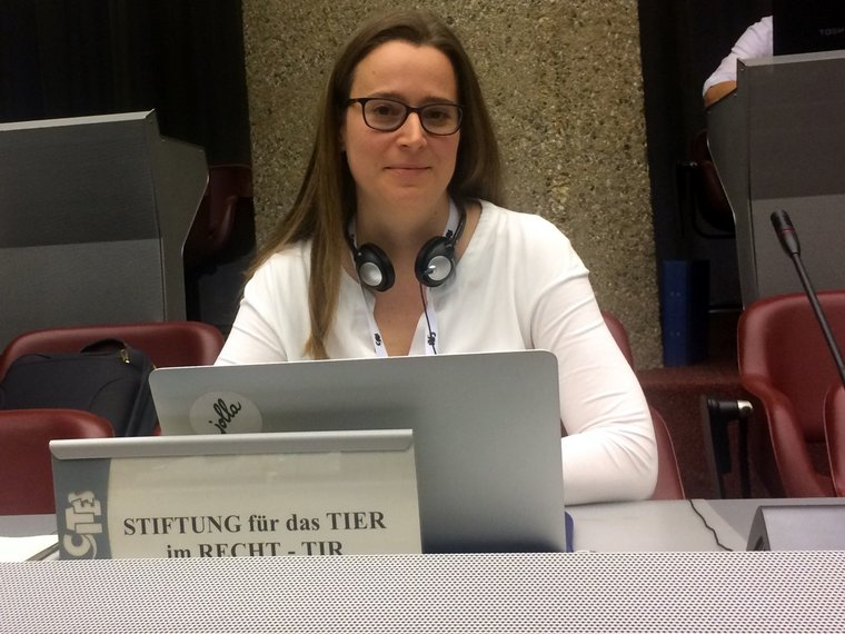 Valeska Bernhard an der CITES Konferenz in Genf 2017