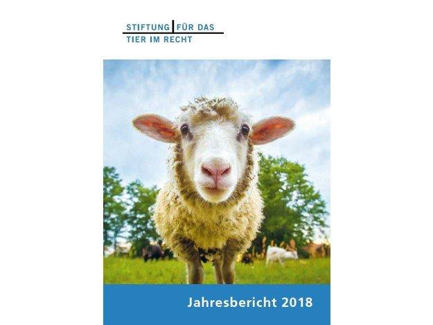 Jahresbericht-2018-cover-quer.jpg