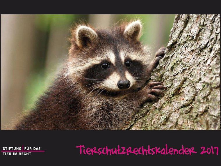 Tierschutzrechtskalender 2017 Cover