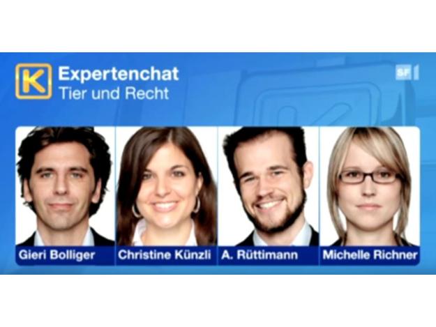 Youtube Kassensturz SRF vom 31.1.2012: Experten-Chat mit Gieri Bolliger und TIR-Juristen zum Thema Tier und Recht