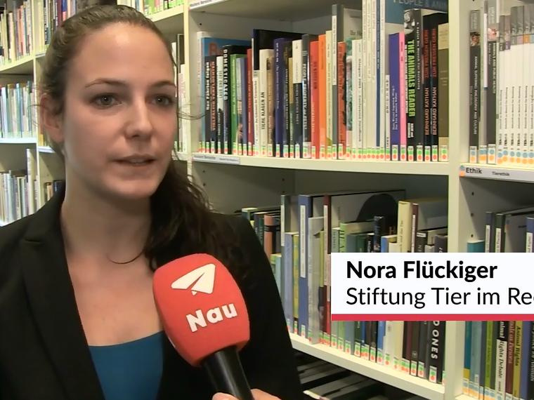 Youtube Nau.ch vom 21.11.2017 mit Nora Flückiger zum Thema Auswertung der Schweizer Tierschutzstraffälle 2016