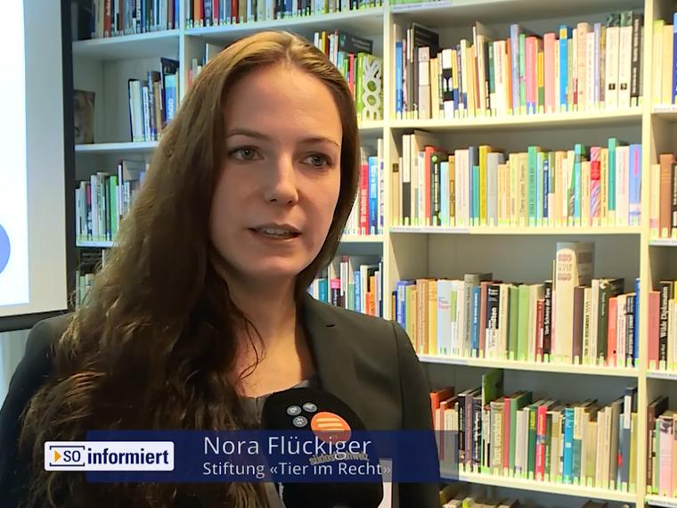 Youtube SO informiert TV Südostschweiz vom 16.11.2017 mit Nora Flückiger zum Thema Auswertung der Schweizer Tierschutzstraffälle 2016