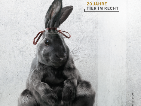 Postkarte Tiere wie Müll Hase deutsch