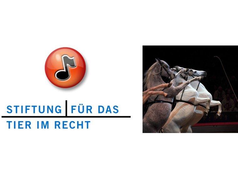 """Radiosendung Treffpunkt vom 18.4.2016 mit Vanessa Gerritsen zum Thema """"Stress für die Show..."""""""