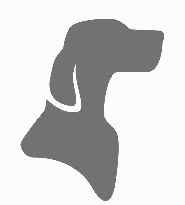 Platzhalter-Team-Hund.jpg