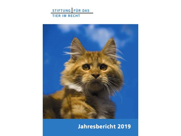 TIR Jahresbericht 2019 Front Website