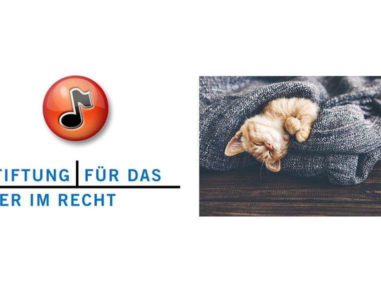 Youtube Radiosendung Espresso SRF vom 18.10.2017 mit Stefanie Frei zum Thema Macht ein Chip-Obligatorium für Katzen Sinn