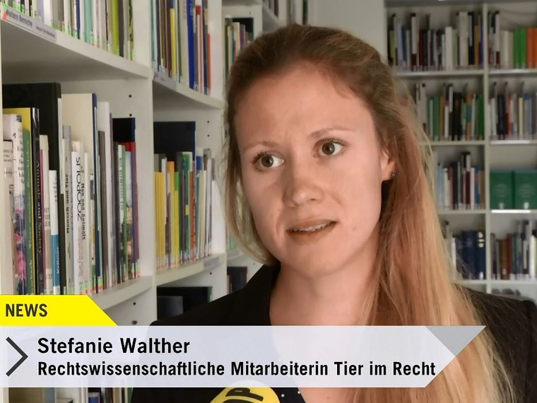 stefanie walther in tele top news vom 16.10.2018