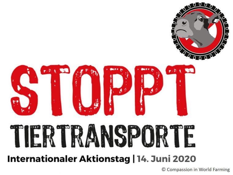 Stoppt-Tiertransporte-2020.jpg