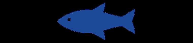 Symbol_Fischereirecht_800x180.png