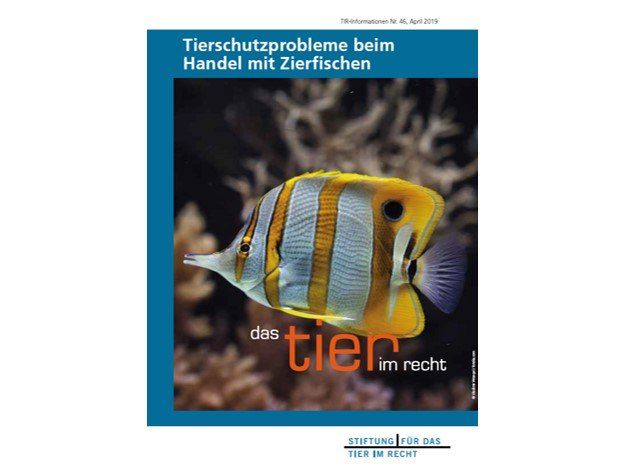 TIR-Flyer Nr.46 Tierschutzprobleme beim Handel mit Zierfischen