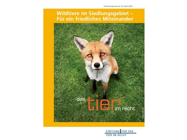 TIR-Flyer Nr. 50 Wildtiere im Siedlungsgebiet quer