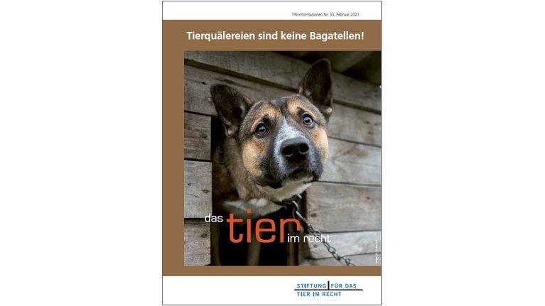 TIR Informations-Flyer Nr. 53 (2021)