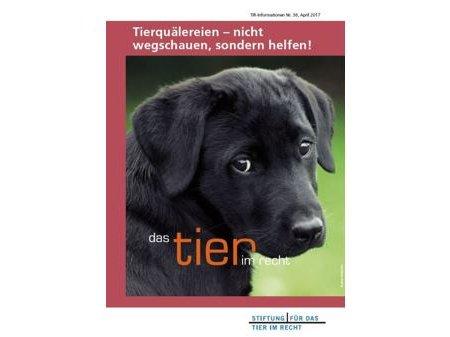 TIR Flyer Nr. 38_front.JPG