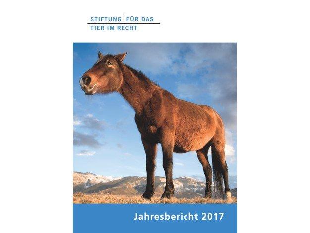 Cover TIR Jahresbericht 2017