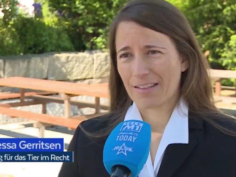 Vanessa Gerritsen bei Tele M1 Aktuell, 2021 06 01