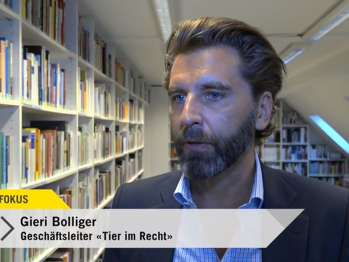 Tele-Top-Fokus-Tierpransporte-Gieri-Bolliger-2018-06-12.JPG