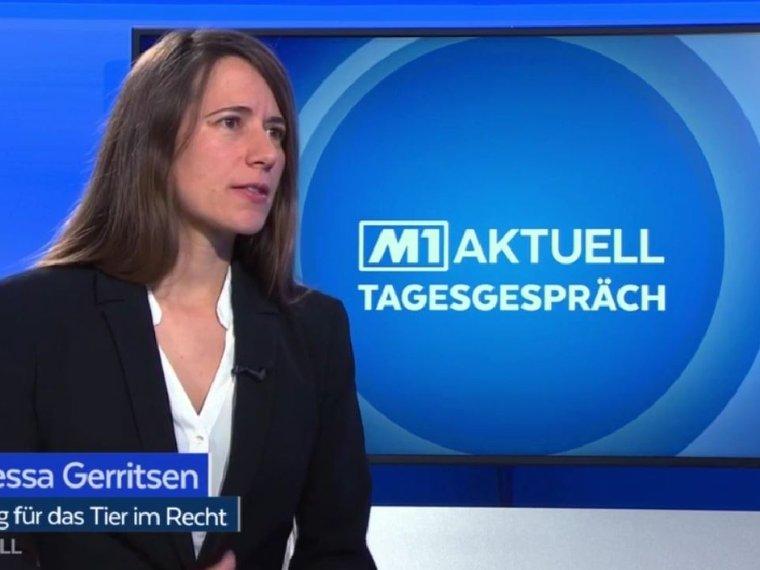Vanessa Gerritsen bei Tele M1 in Das Tagespespräch vom 7.2.2020