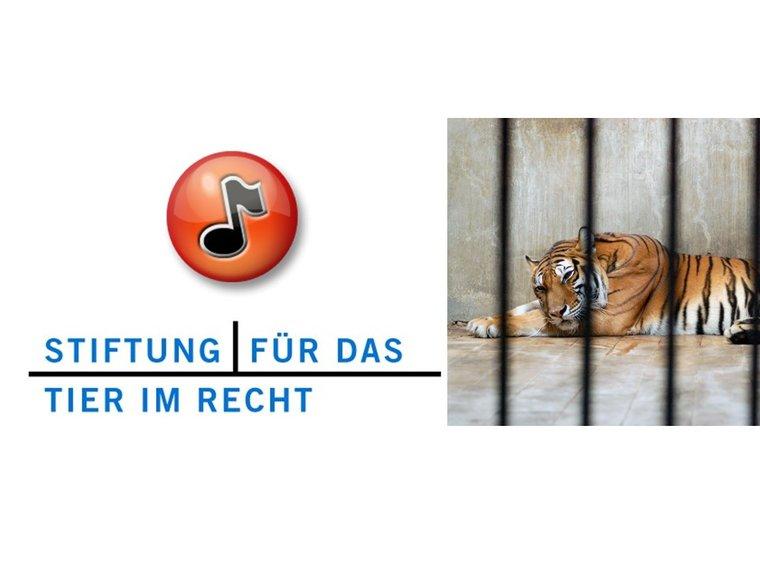 """Radiosendung Doppelpunkt vom 20.3.2012 mit Gieri Bolliger zum Thema """"Wildtiere im Zoo und Zirkus"""""""