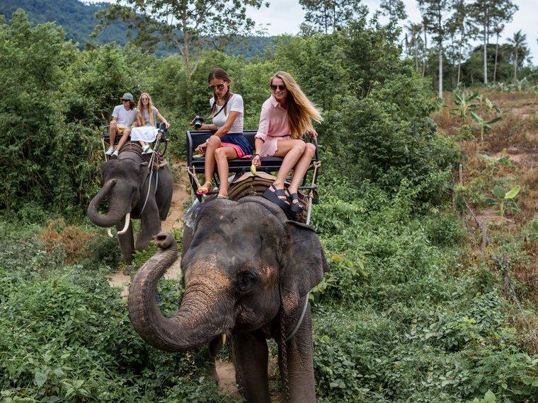Touristen reiten Elefanten