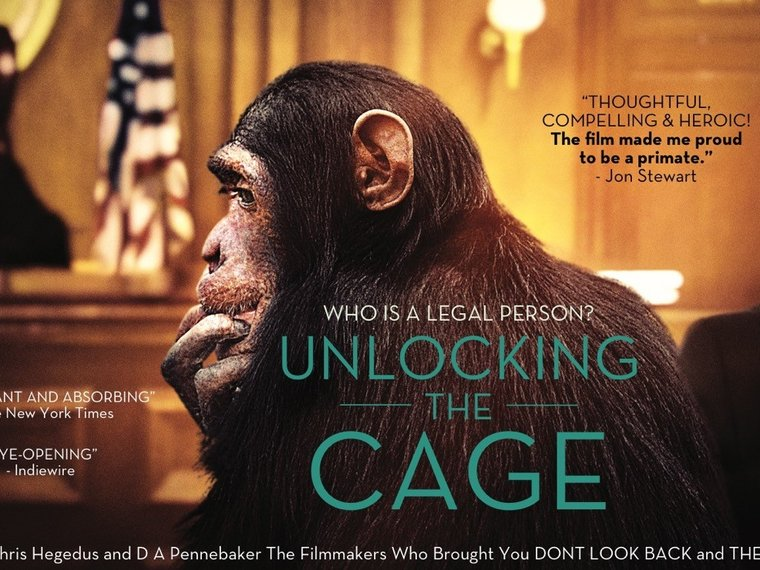 Unlocking-The-Cage_Filmposter.jpg