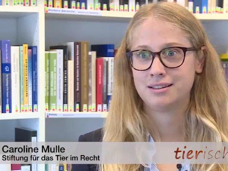 Caroline Mulle in der Sendung Tele M1 tierisch vom 1.10.2020