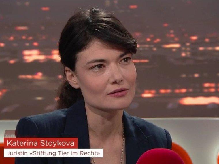 Tele Züri TalkTäglich vom 21.1.2020 mit Katerina Stoykova